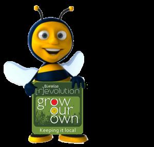 BEE_07_GROWOWN