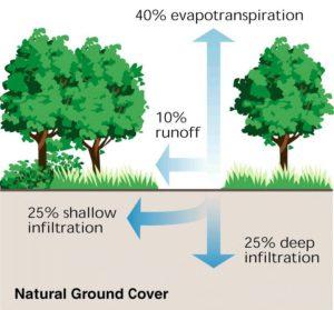 natural-vs-urban-runoff